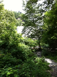 Ithaca Falls from the Path