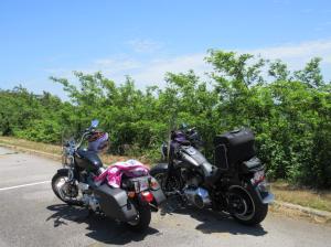 Talimena Rest Stop